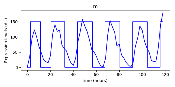 Results and experiment data