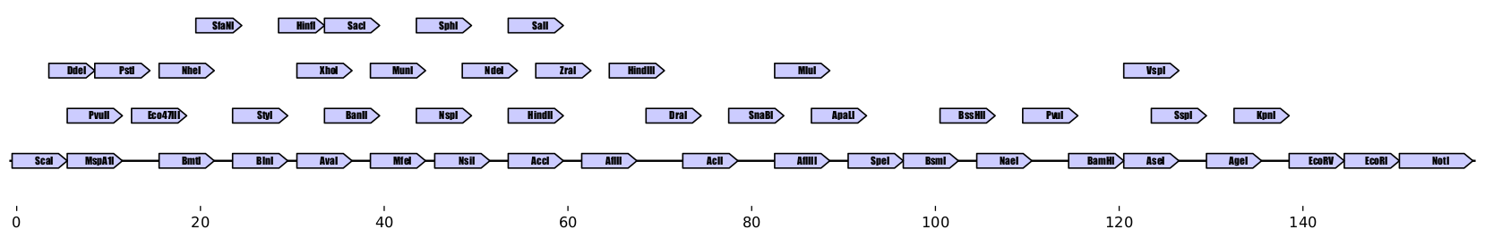 https://raw.githubusercontent.com/Edinburgh-Genome-Foundry/zymp/master/docs/_static/images/example_array.png